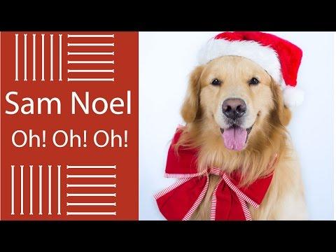 Imagens de feliz páscoa - Fotos de Natal do Sam - Book Pet de Natal