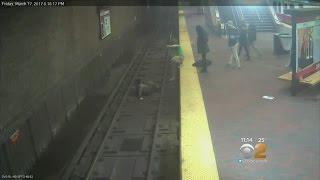 إنقاذ رجل سقط على القضبان الحديدية قبل قدوم القطار في أمريكا