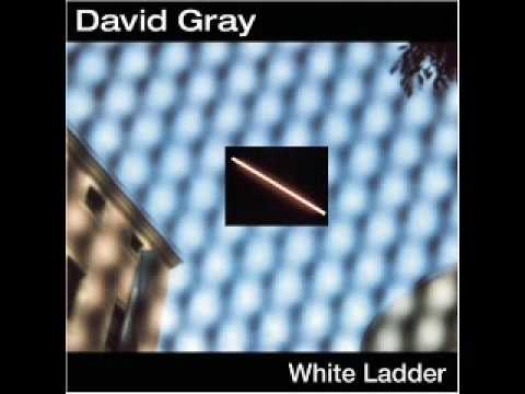 David Gray - My Oh My lyrics