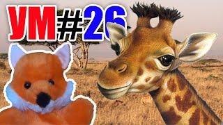 УМ #26 - Удивительный мир. Детям о жирафах