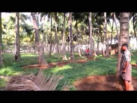 Nelli Kundu short film