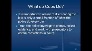 Introduction to Criminal Justice.  Section 1.1