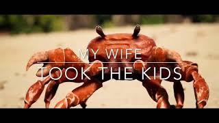 My wife took the kids (Dancing crab meme)