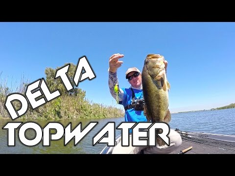 Bass Fishing: A Day On The Delta! Ft. Matt Leverich_Horg�szat vide�k