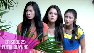 Video Putri Duyung - Episode 29 MP3, 3GP, MP4, WEBM, AVI, FLV Januari 2018