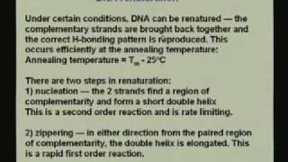 Lecture - 22 Nucleic Acids III