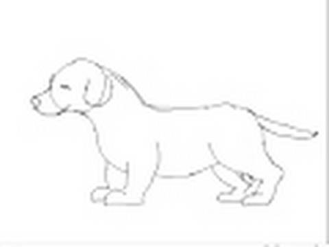 Perros para dibujar faciles a lapiz - Imagui