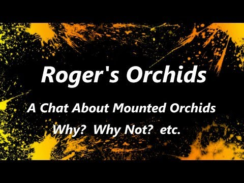 A Chat About Mounted Orchids - Why? - Why Not? etc. (видео)