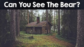 Video Nobody Can See All The Hidden Animals । Optical Illusions । Brain Teasers MP3, 3GP, MP4, WEBM, AVI, FLV Februari 2019