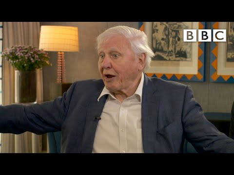 David Attenborough: 'This is the last chance' to address climate change | BBC