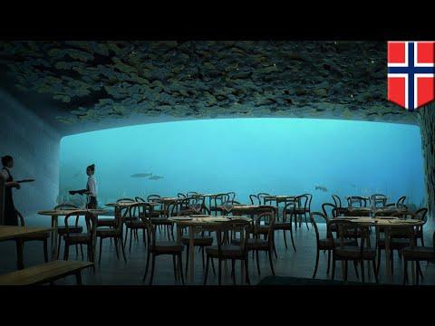 המסעדה התת-ימית הגדולה ביותר תיפתח בקרוב.. מזמינים מקום ?