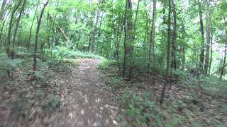 Mountain Bike Trail At Dodge Park