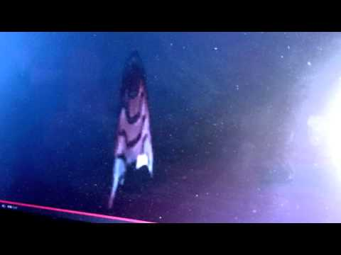 UFO Sightings NASA Shuts Live Video Feed As Massive UFO Appears! 1/6/2015