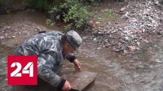 Колымские богатства: геологи обнаружили новые месторождения полезных ископаемых