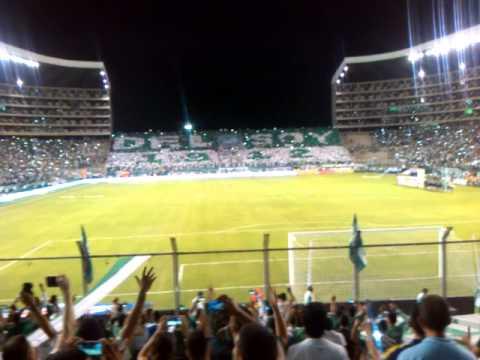 Entrada cali vs nacional 23-mayo 2015 - Frente Radical Verdiblanco - Deportivo Cali