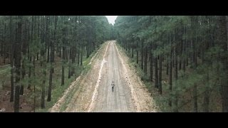 Hollow Coves  The Woods Official Music Video