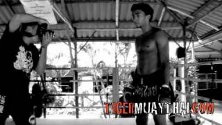 Music Is King - Tiger Muay Thai And MMA Guest Training Highlight Reel