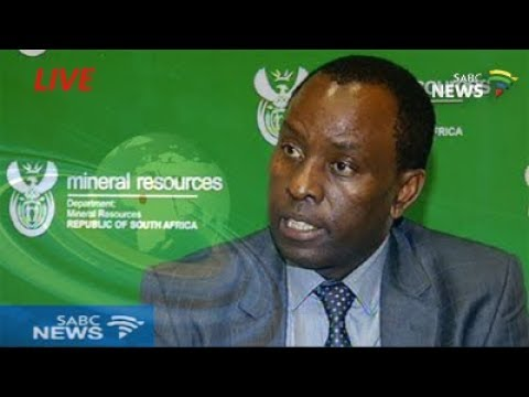 Zwane tells resources committee to 'treat him as befits his status'