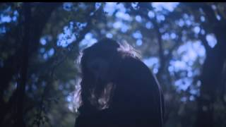 Birdy - Heart Of Gold