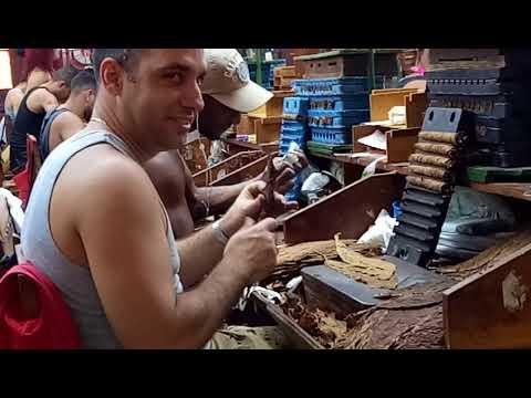Thăm nhà máy sản xuất Cigar của Cuba. - Thời lượng: 1:25.