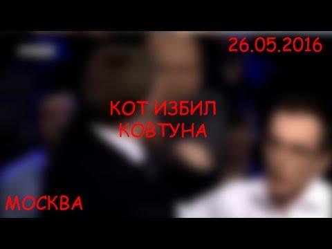Москва. Кот избил Ковтуна (26.05.2016 г.) (видео)