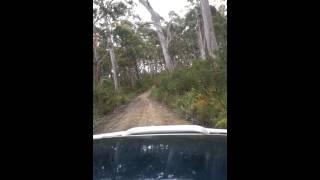 Southport (Tasmania) Australia  city photos gallery : Mitsubishi Pajero, Southport Lagoon 4x4 , Tasmania