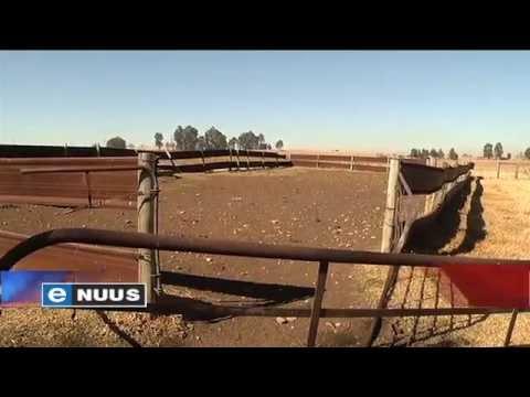 Spogplase verwaarloos, grond lê braak / Farms neglected, land lies fallow