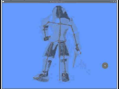 skeletal renewal - No skinning animation.