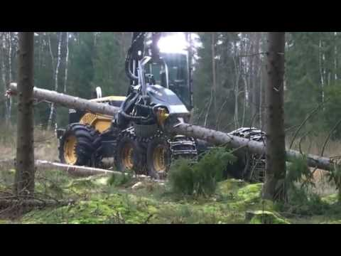 Впечатляет! Лесной комбайн (forest harvester) за работой