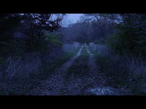 Gettysburg Ghost — Most Authentic Video to date?