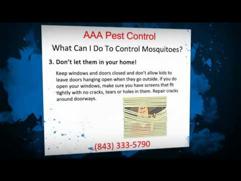 Controlling Mosquitoes This Summer With Pest Control   (843) 333-5790