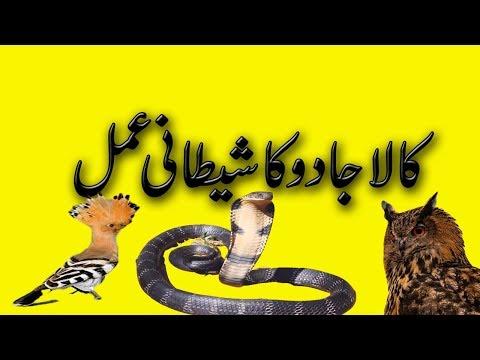 mohabbat ka shaitani amal 1 din ka amal urdu and hindi | kala jadu | shaitani amal