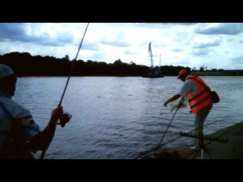 рыбалка на реках белоруссии видео