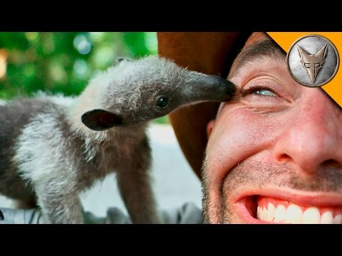 Animal Expert Coyote Peterson Meets Adorable Baby