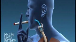 Je prends connaissance des méfaits liés au tabac