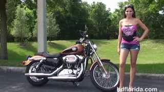 8. Used 2008 Harley Davidson Sportster 1200 Custom Motorcycles for sale - Leesburg, FL