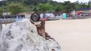 Abandono do terminal marítimo de São Tomé de Paripe