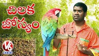 Video Bithiri Sathi Speaking With Parrot || Sathi On Parrot Astrology || Teenmaar News MP3, 3GP, MP4, WEBM, AVI, FLV Juli 2018
