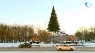 На площади Победы-Софийская идет установка главной новогодней елки  Великого Новгорода