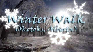 Okotoks (AB) Canada  city pictures gallery : Winter Walk in Okotoks, Alberta(Canada)