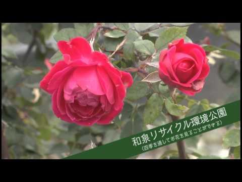 和泉市観光PRビデオ