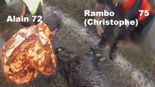 Chasse en battue et Tir de sangliers et chevreuils / hunting wild boar in france 2016