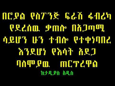 Taddias Addis: ሮያል ስፖንጅ ፍራሽ ፋብሪካ የተቃጠለዉ ሁን ተብሎ እንደሆነ ተገመተ