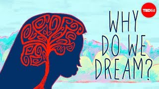 Why do we dream? – Amy Adkins