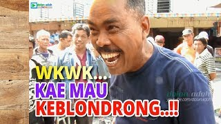 Video Mas Eko Prima Mborong, Pak Cemplon Musim Keblondrong MP3, 3GP, MP4, WEBM, AVI, FLV April 2019