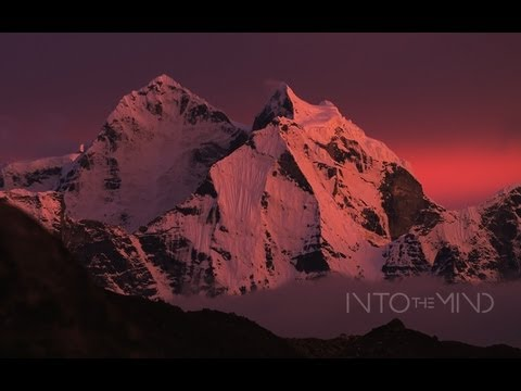 Into The Mind - Official Teaser from Sherpas Cinema
