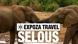 Selous Game Reserve Tanzania  City pictures : Selous Game Reserve Vacation Travel Video Guide