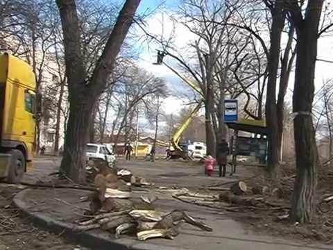 prostitutki-ukraina-nikolaevskaya-oblast-pervomaysk