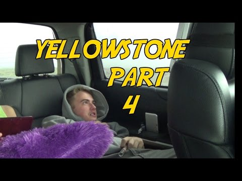 YELLOWSTONE - Ever dreamed of being a