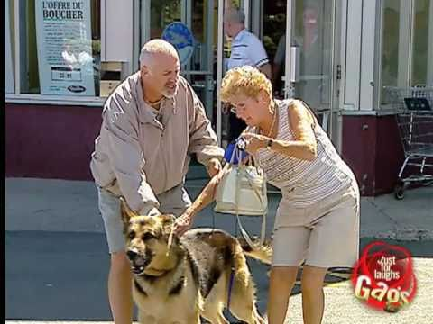[Just4Laughs Gags Vol 1] Tập 58: Dog Attacks Meat Man Prank